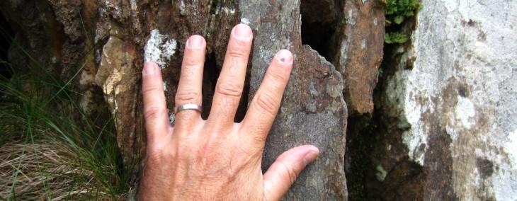Shetland Hand